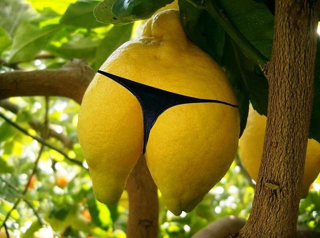 Korčula bi tržištu mogla ponuditi oko 50 tona limuna