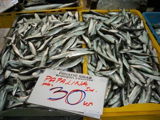 Plava riba ima najbolje cijene i najzdravija je