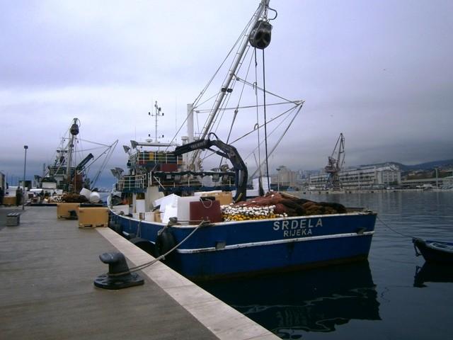 Za ribarstvo i akvakulturu 65 milijuna eura