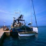 Slovenija jedina država na svijetu koja nudi dozvole za ribolov na tuđem teritoriju