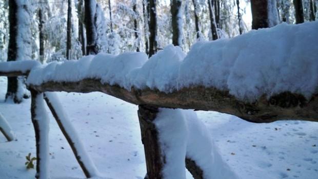 Snijeg - FreePix