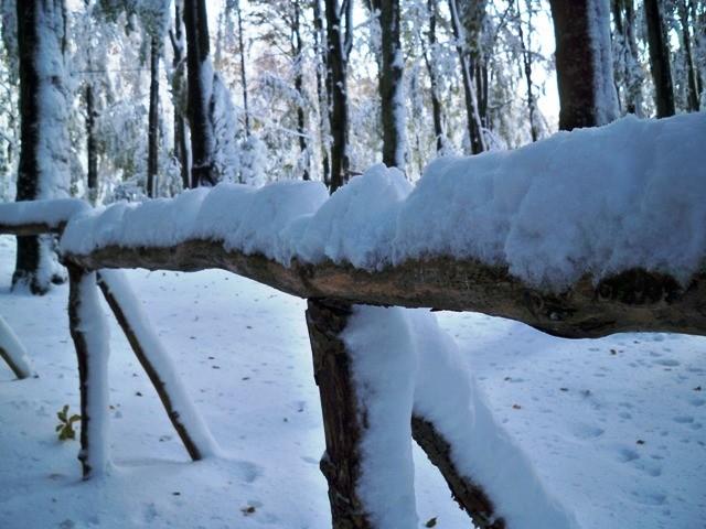 Snijeg i u nekim nizinama