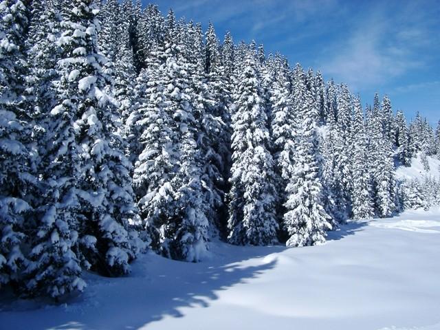 U Begovom Razdolju i Zavižanu više od 130 cm snijega