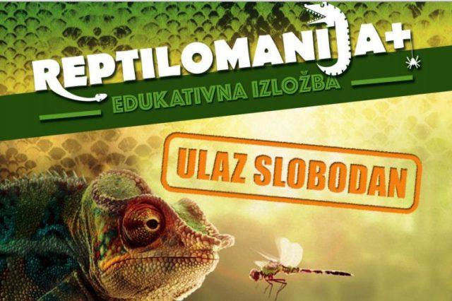 Reptilomanija, Izložba egzotičnih životinja