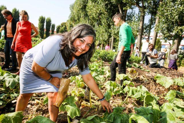 Zajednički društveni vrtovi sve popularniji u Beču