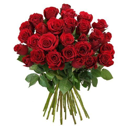 Kafići puni, a mi uvozimo milijuna ruža u veljači!?