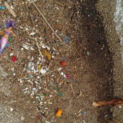Na mljetskoj plaži pronađena nasukana morska sirena