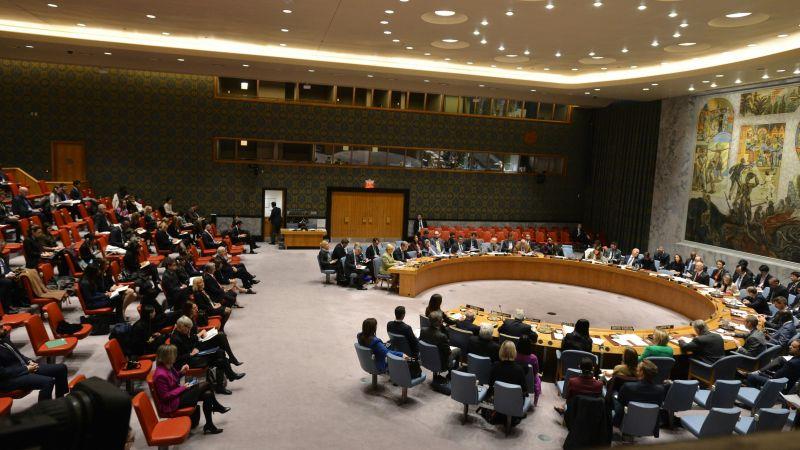 Presjednica Hrvatske u UNu napala sud u Hagu