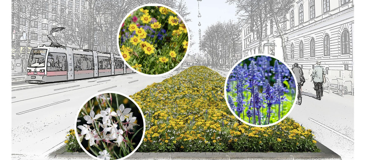 Bečki gradski vrtovi sade prirodne klima uređaje