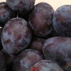 Uvozne lošije šljive štete slavonskoj šljivi