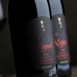 Vinoretum: Prva boutique vinoteka posebnih serija vina