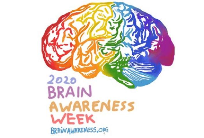Manifestacija: Upregni za mozak!