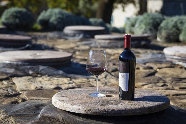 Koji nas trendovi očekuju u svijetu vina u 2021.?